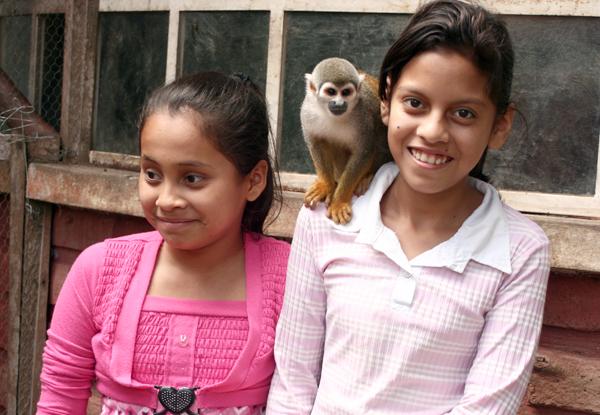 Monkey See, Children & Monkeys Do!