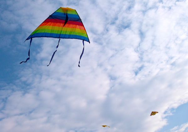 kite flying essay kite festival in gujarat ways not to start a kite  essay writing tips to essay on kite flying i dreamt of flying a kite in the