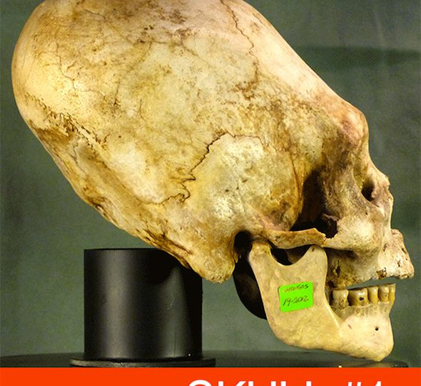 18 Elongated Skulls of Paracas Peru [VIDEO]
