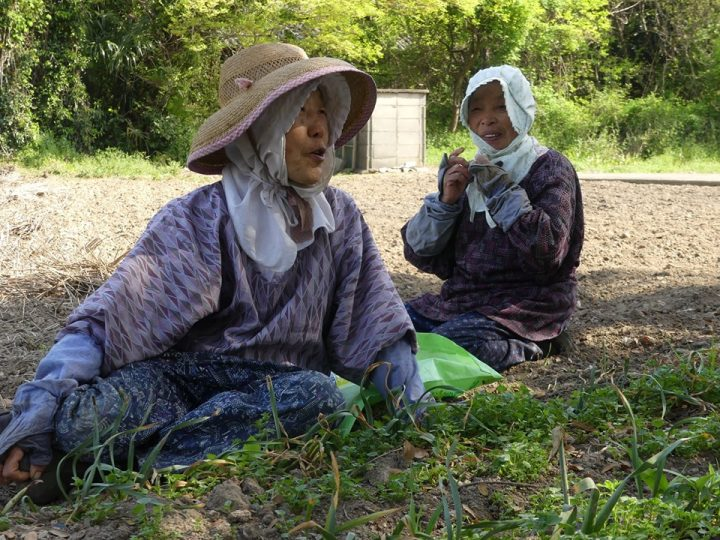 Season's Changes – Teshimacho Island