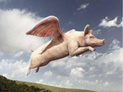 When Swines Fly