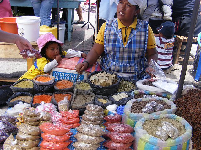 Enjoy the Sights & Sounds of Otavalo
