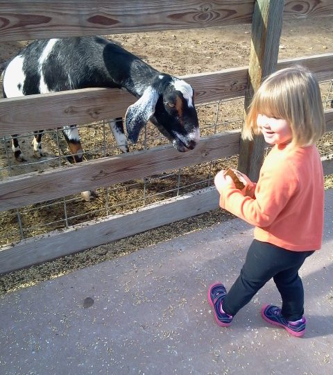 Becoming a worldschooler… A Guest Post